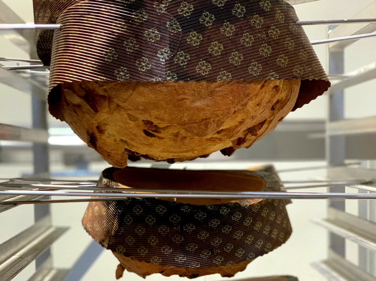 panettone californiano