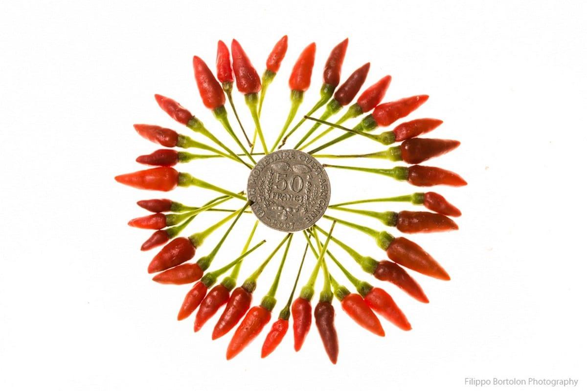peperoncini Friuli