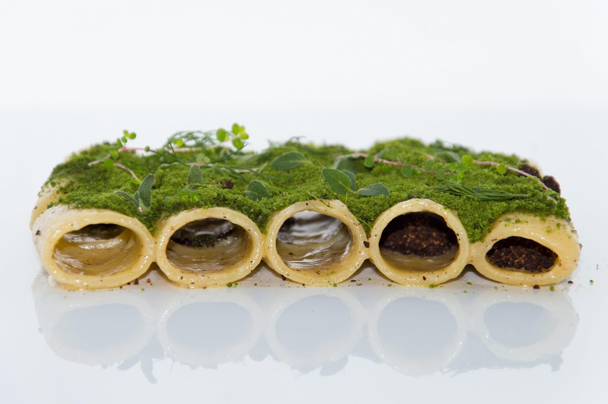 Pacchero con muschio di erbe selvatiche danilo ciavattini