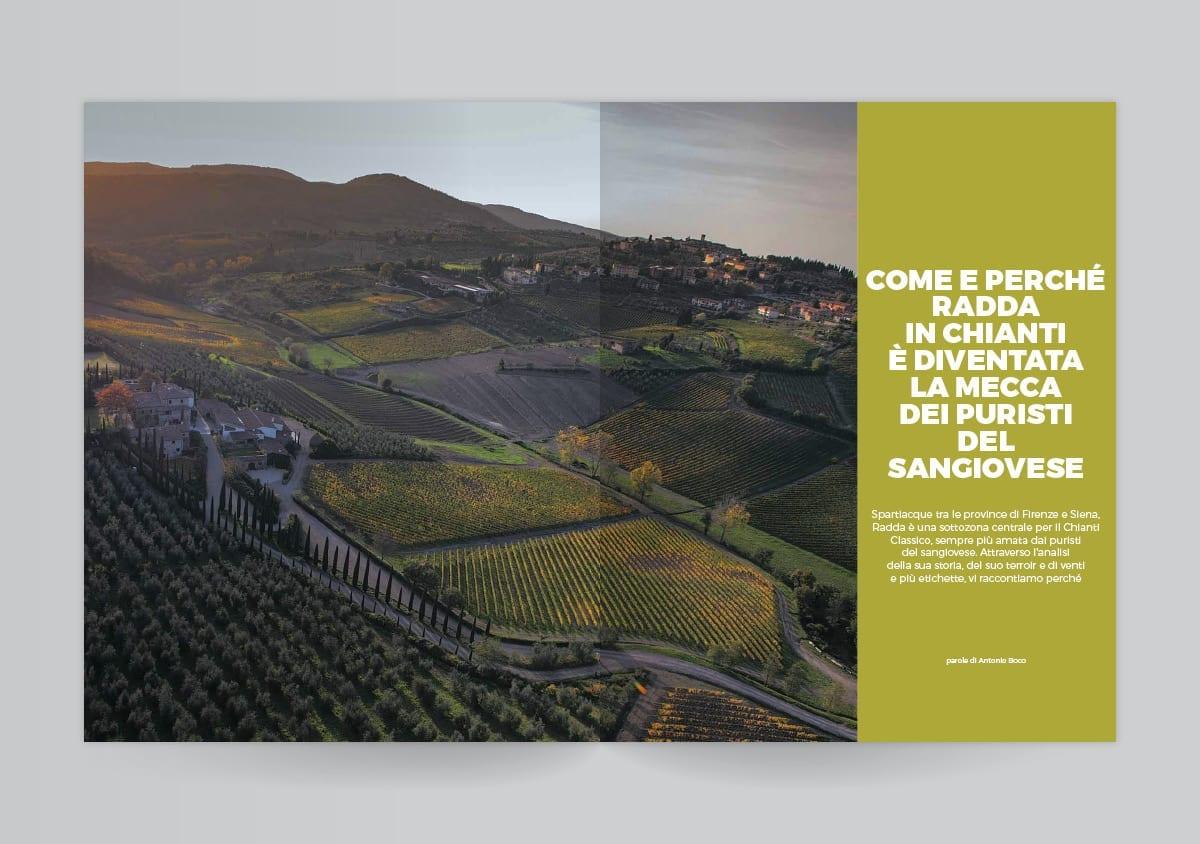 Il panorama viticolo di Radda in Chianti