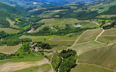 Radda in Chianti: Monterinaldi