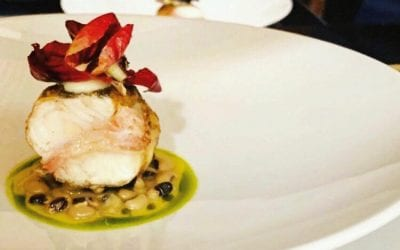 Lucioperca al ristorante Opera di Torino