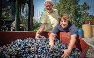 Bruno Carvi e Donatella Giannotti con l'uva vendemmiata