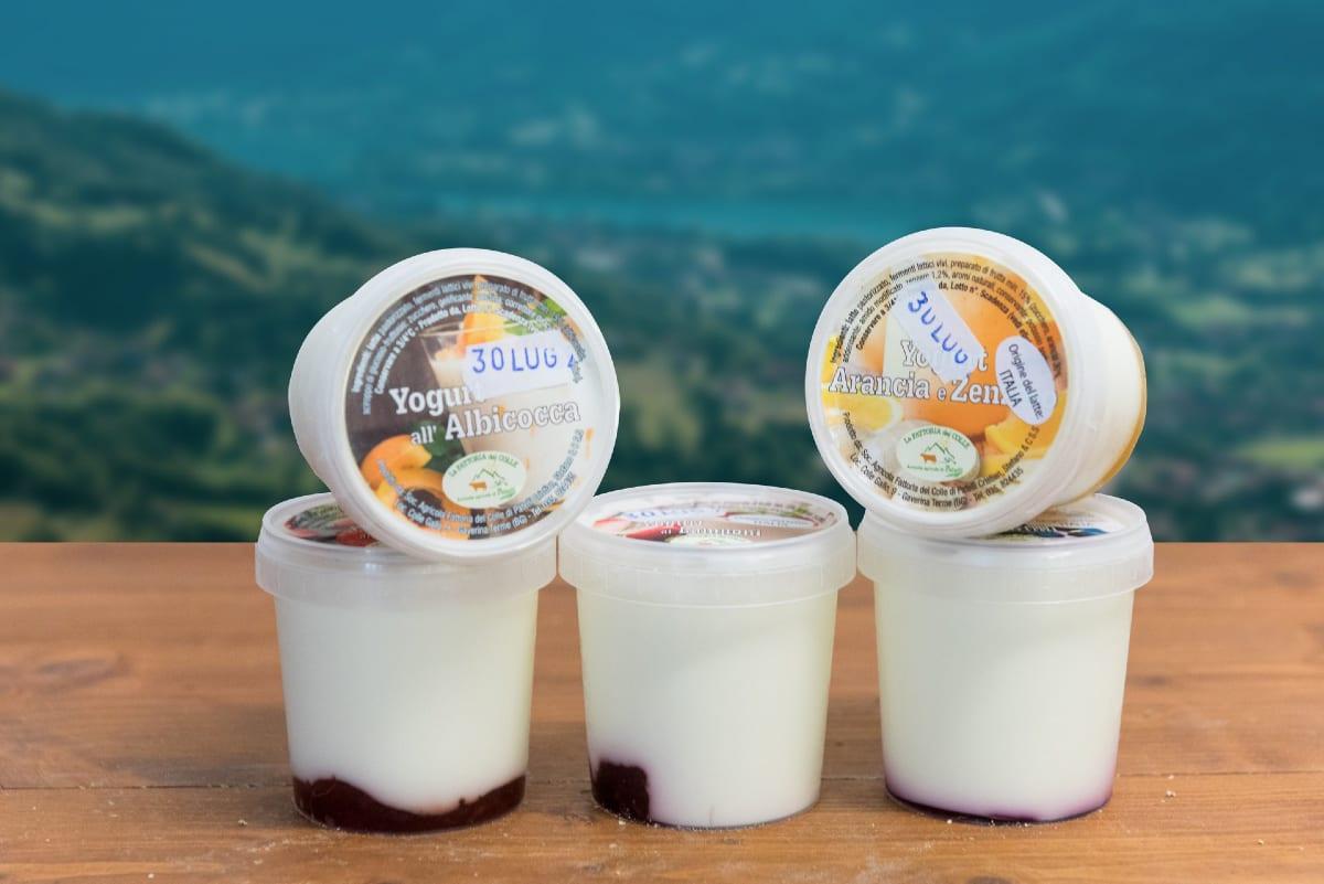 fattoriadelcolle yogurt artigianale