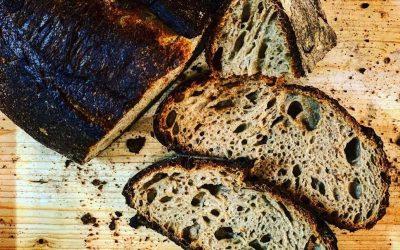 Pane e pizza: tutto sugli impasti con fermentazione spontanea di frutta