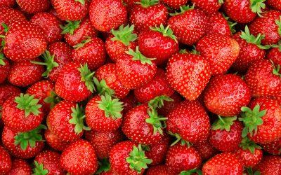 Prodotti del mese. Aprile: le fragole e la ricetta della classica crostata