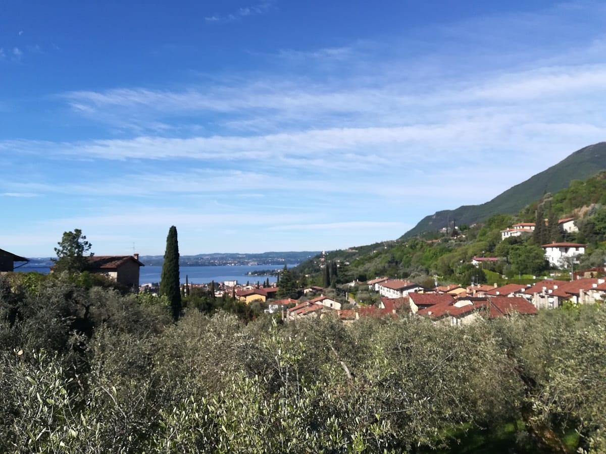 Casa del Tempo Ritrovato, oliveto e lago di Garda