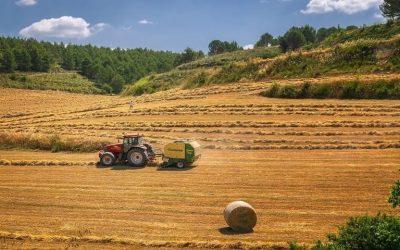 Un campo di grano arato da un trattore