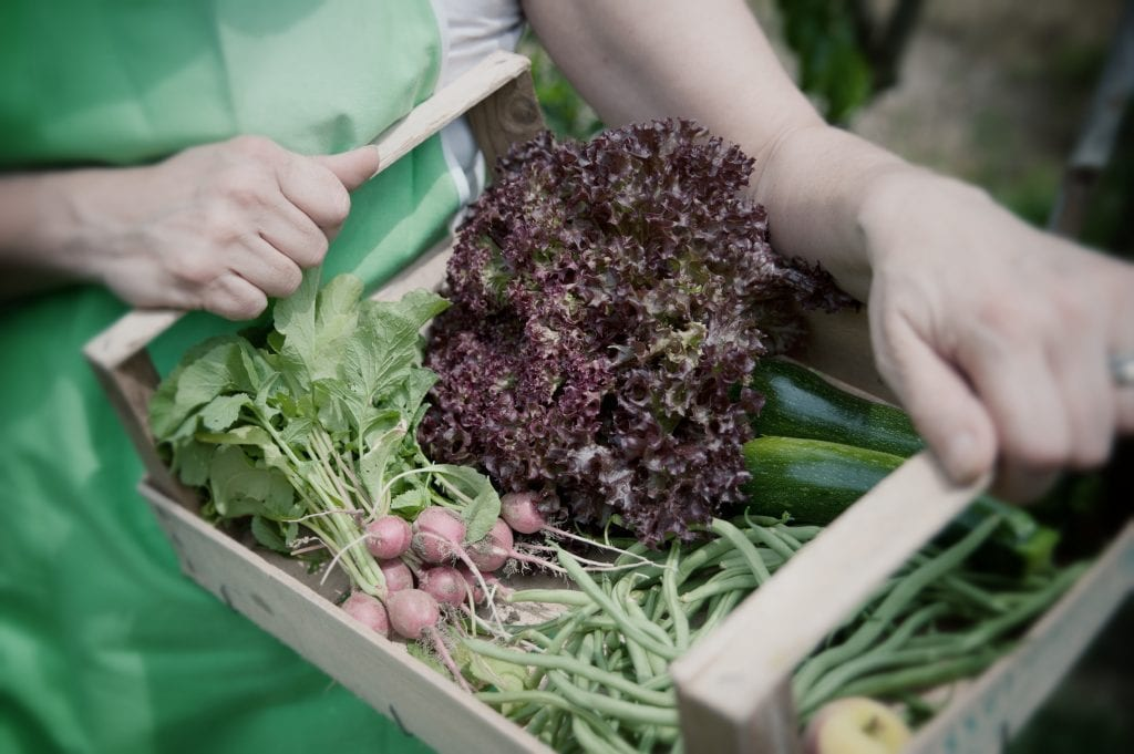 cassetta verdure a domicilio