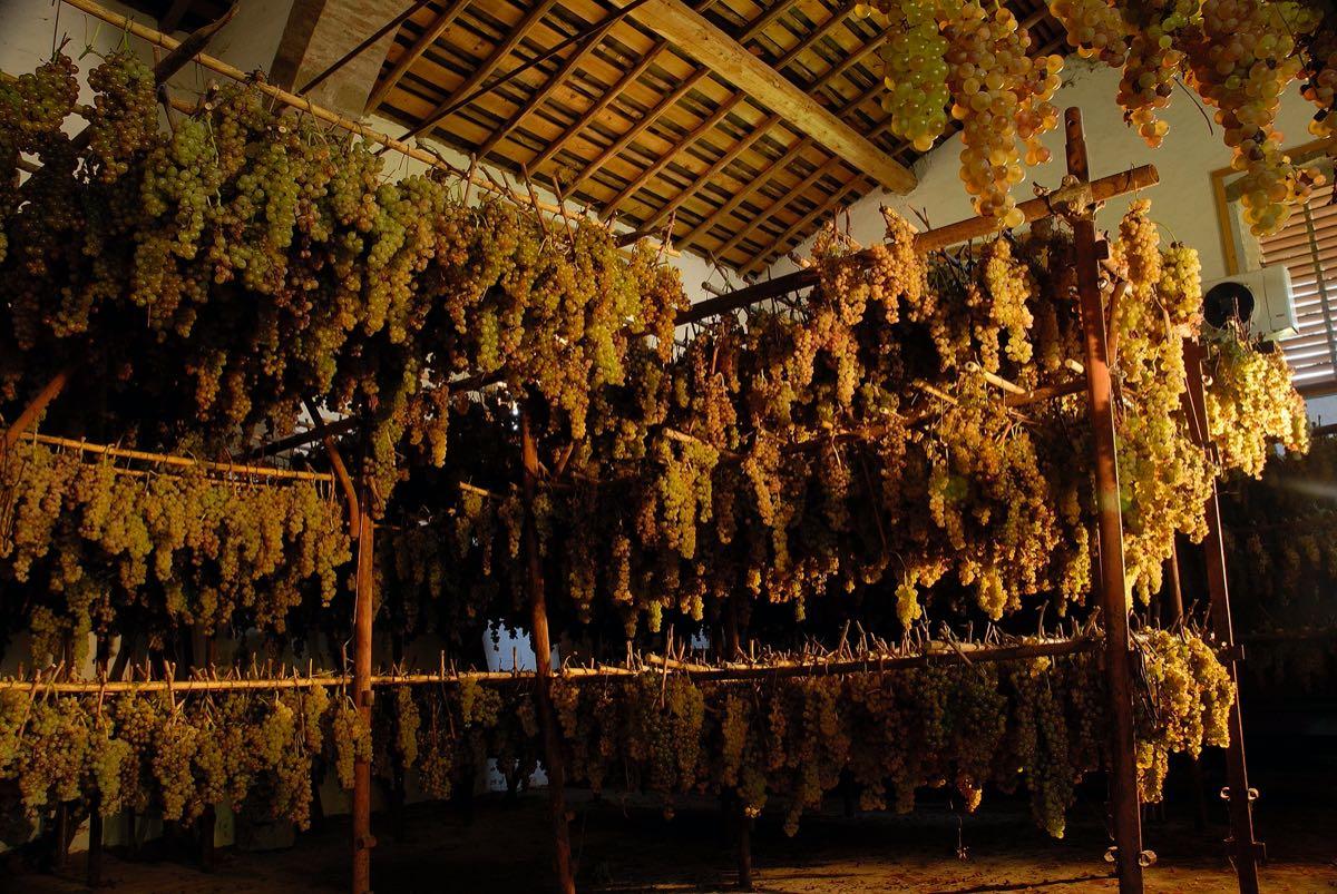 Selvapiana Rufina vino