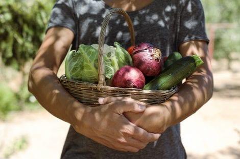 Giovane donna stringe un cesto di ortaggi