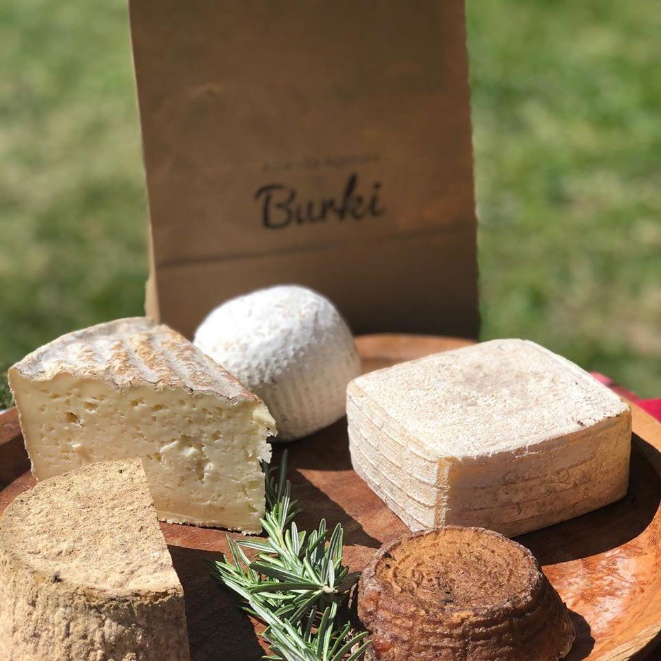 I formaggi di malga di Alpe Burki