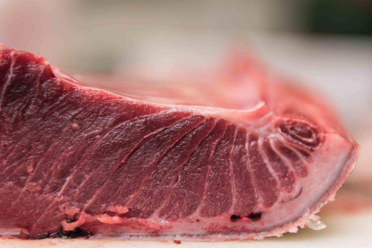 Ventresca di tonno rosso