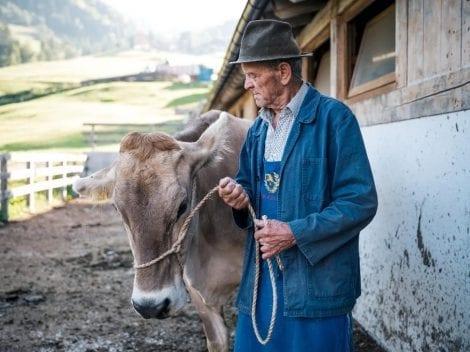 Un allevatore ladino