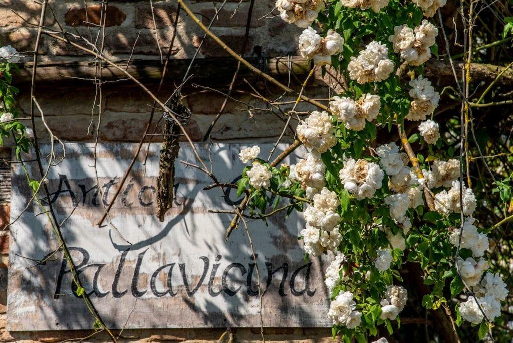 Antica Corte Pallavicina FOTO FRANCESCA BOCCHIA (6)