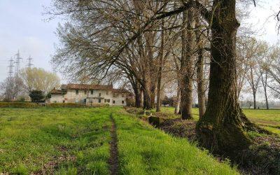 La cascina Campazzino e il parco del Ticinello