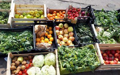 Cassette di frutta e verdura recuperate