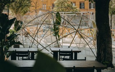 il giardino di Mediterraneo al MAXXI