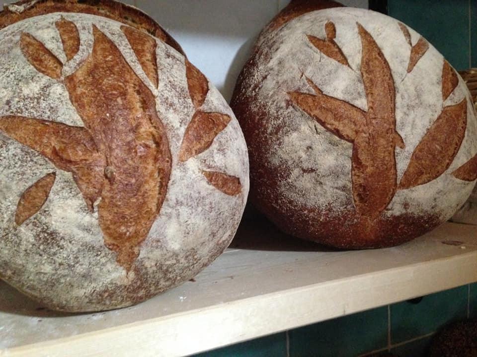 Il pane dell'agripanetteria la terra che ride