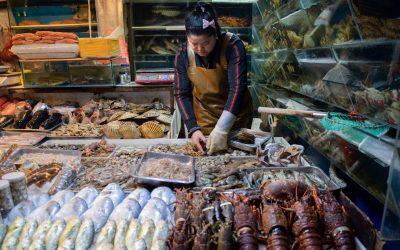 Un banco che vende crostacei in un wet market cinese