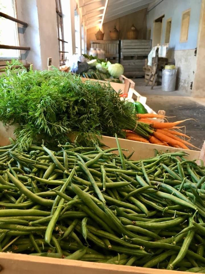 Verdura fresca alla bottega Spigaroli