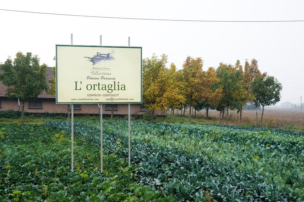 I campi dell'azienda Spigaroli