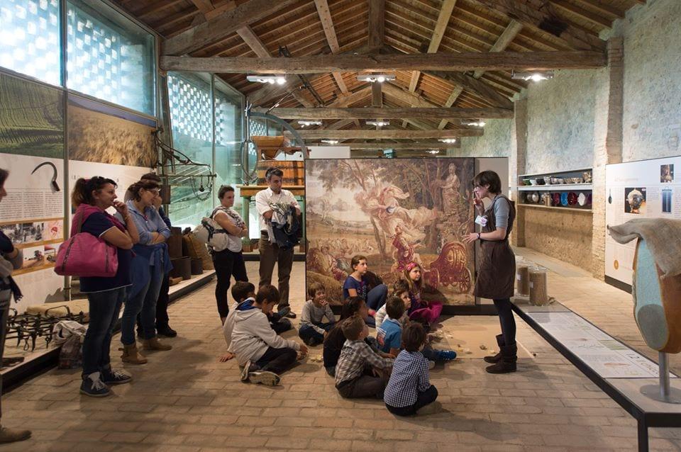 Musei del cibo della provincia di Parma