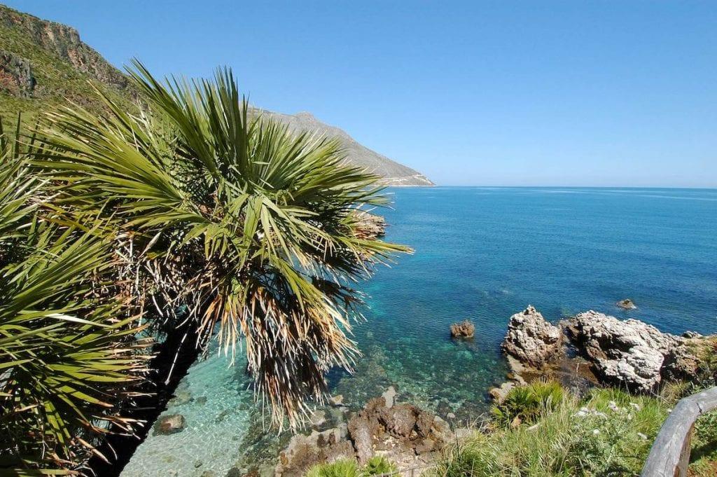 Sicilia. mare e palme
