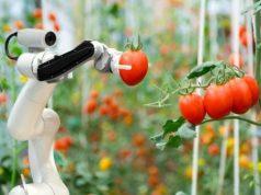 Start-Up 4 Food: Sviluppo di progetti imprenditoriali nel business del food
