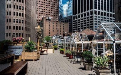 La terrazza di Ampia a New York