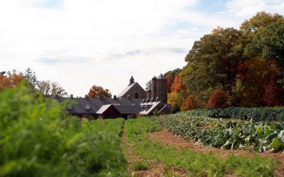 La tenute di Blue Hill at Stone Barns