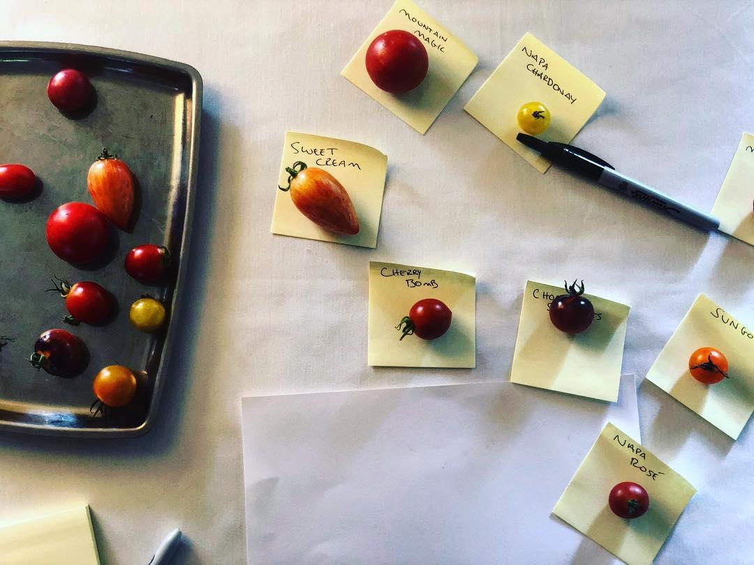 Diverse varietà di pomodoro da Blue Hill