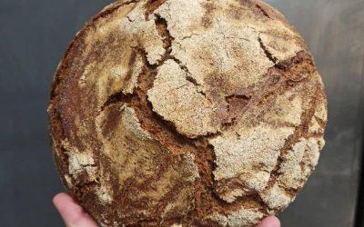 Forno Del Mastro a Monza. Ora il pane ottiene il certificato biologico