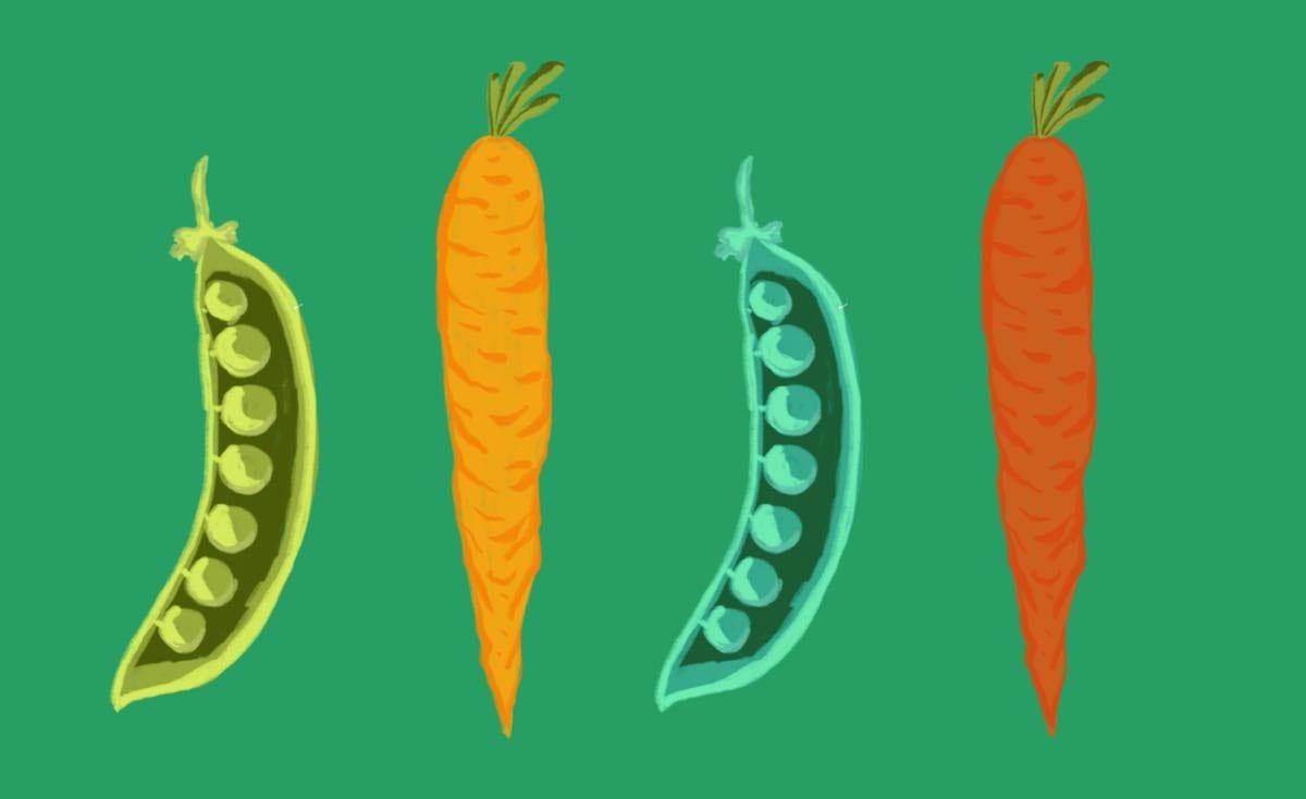 La biodiversità: come e perché arricchisce i campi