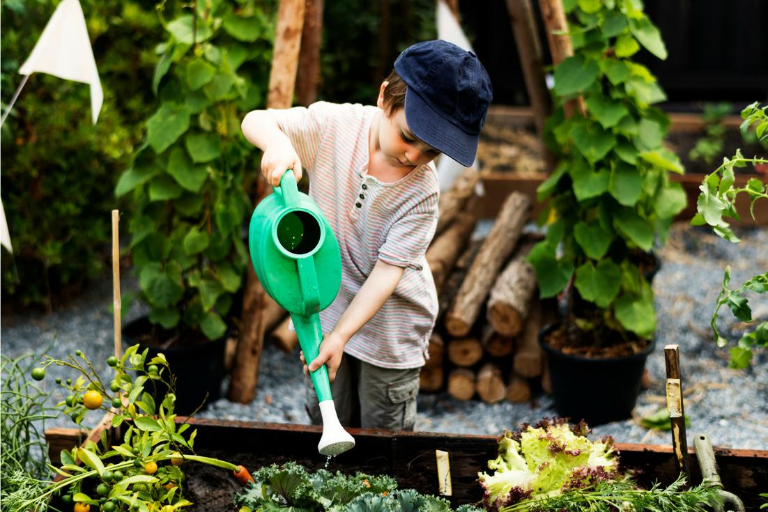 Un bambino innaffia le piante nell'orto