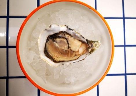 Nuove aperture a Bologna: Scampo Pescheria Moderna, la pescheria con cucina