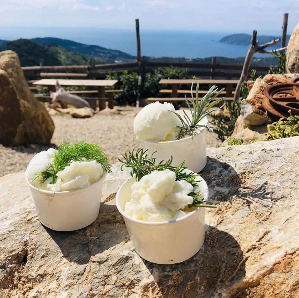 Il gelato col latte di capra all'isola d'Elba