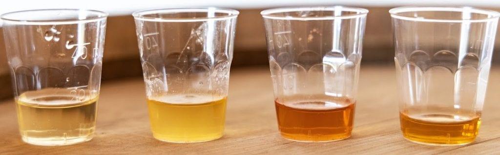 Degustazione Aceti, Vino Moscato, 20 giorni, 8 mesi, 1 anno. Acetaia Pahontu