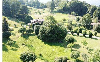 Un terreno con prati e bosco