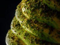 Crema spalmabile al pistacchio dei pasticceri Corsino