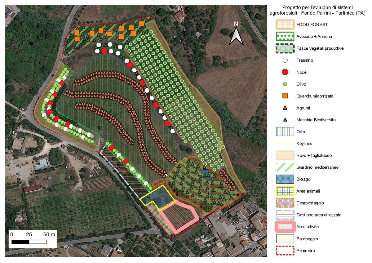 Il progetto della food forest