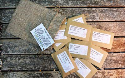 saccchetti cercatori di semi
