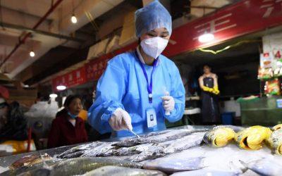 Controllo di pesce surgelato in Cina