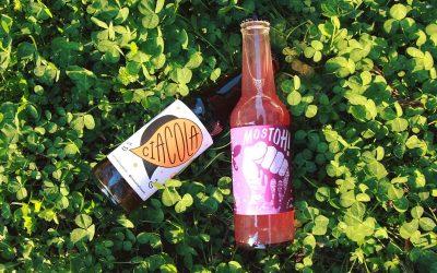 Bottiglie di Ciacola e Mostoh