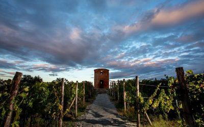 Nel suggestivo borgo di Villa Salettal'atelier del vino toscano
