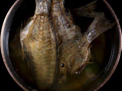 Brodo di pesce tostato