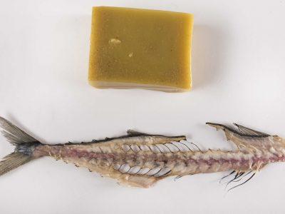 Gel di pesce