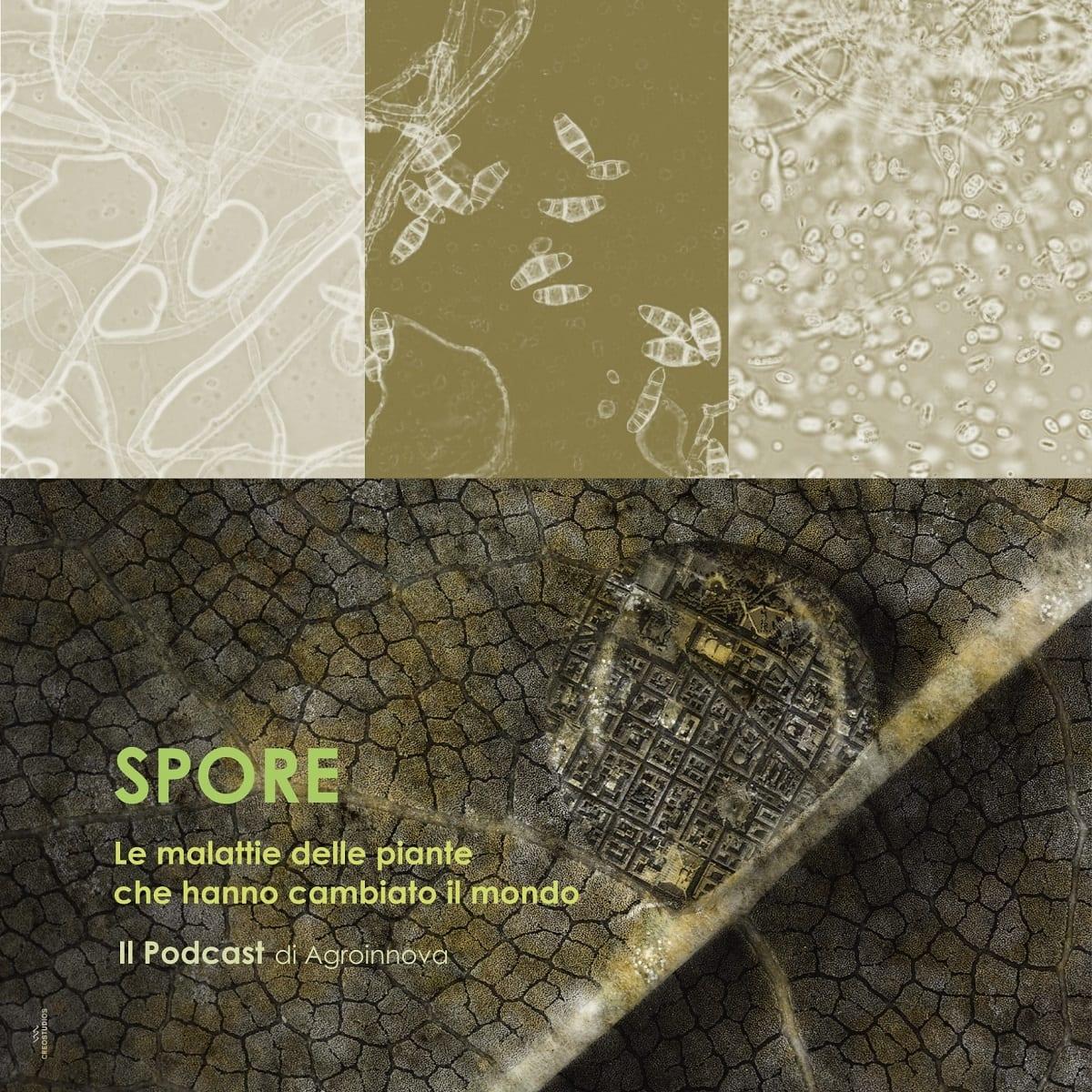 La locandina di Spore
