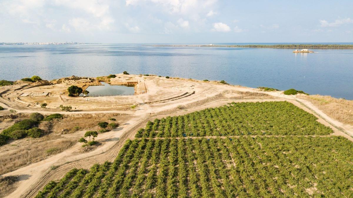 Azienda vinicola Tasca d'Almerita. Credits Benedetto Tarantino