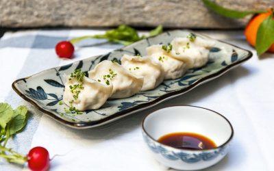 Un piatto di ravioli sino-giapponesi con salsa di soia